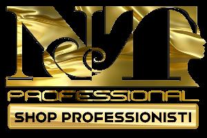 NT Professional